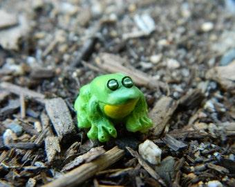 Fairy Garden Accessories TINY Frog Miniature Terrarium Miniature Toad Frog
