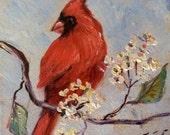 """Red cardinal bird no.5 painting original art 6 x 6"""""""