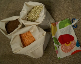 Sale - Set of Three Organic Bulk Food Bags with Organic Fruit Punch Carry Pouch & Carabiner - Perfect for Bulk Flour, Nuts, Grains, Legumes