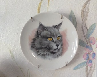 Cat plate - need i say more?