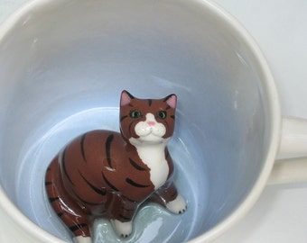 Brown Tabby  (In Stock)