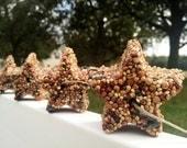 12 Baby shower favors, bird seed star favors, set of 12 bird seed stars, twinkle twinkle little star, wedding favors