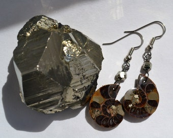 Rare Baby Ammonite Earrings with Natural Pyrite