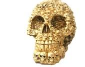 skull sculpture, macabre home decor, goth, skulls and bones, skull art, metallic gold