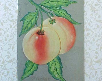 Pretty Embossed Edwardian Era Postcard with Peaches-For Project