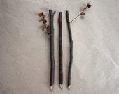 Three Natural Twig Pencils, Pack of 3 Twig Pencils, Made in Australia