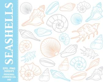 Seashell clipart   Etsy