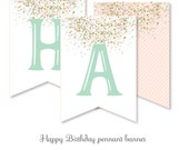 HAPPY BIRTHDAY pennant banner pink gold aqua confetti Oh What Fun turning 1 instant download printable DIY digital file