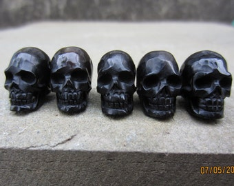 Amazing detail  5 pieces Hand Carved buffalo horn skulls beads, top to bottom   Drilled  B5230