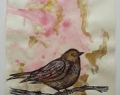 Hand Drawn British Black Bird in Black Ink Pen and Pink and Gold Ink