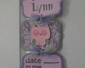 Baby Girl Hospital Banner- Owl Baby Girl Banner- Baby Girl Owl Hosp. Sign - 3 cards