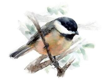 Original Watercolor Bird Art Bird Illustration Animal Nursery Art Hand Painted 6x8 Chickadee