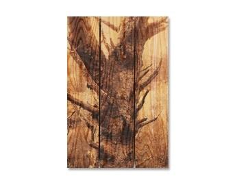 16x24 Old Tree Trunk, Cedar Wood Art, Indoor Outdoor Wall Decor, Wall Hanging, Rustic Rough Tree (SS1624)