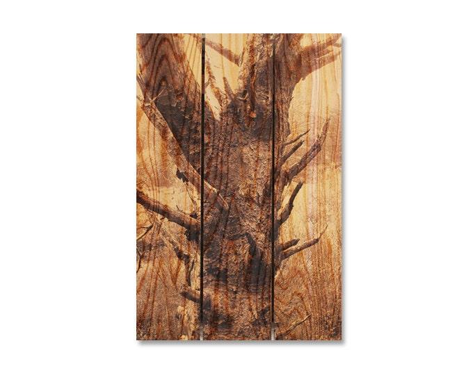 16x24 old tree trunk cedar wood art indoor outdoor wall for Tree trunk wall art