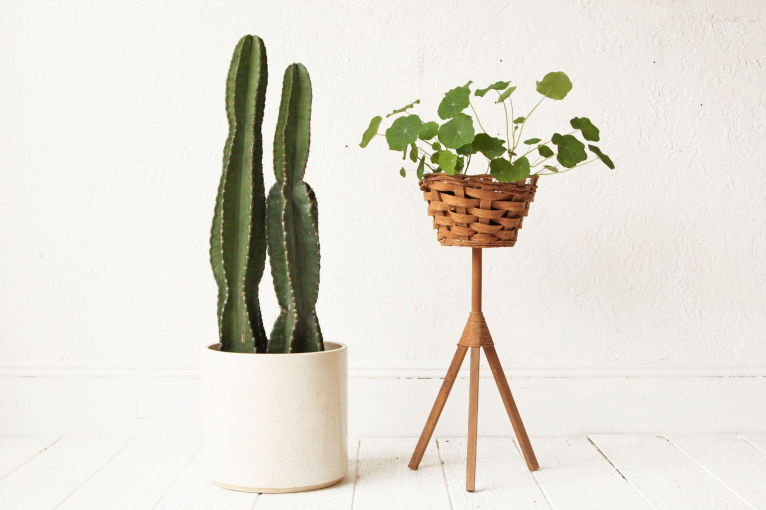 mid century plant stand wicker basket tripod. Black Bedroom Furniture Sets. Home Design Ideas