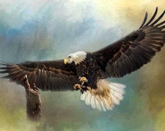 Bald Eagle Art, Flying, Digital Art, Approaching His Perch, Birds of Prey, raptor, Texture, Wildlife, Photographic Print Nature print