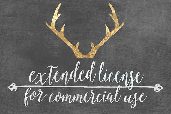 Commercial License for use of Graphics for Products & in Branding