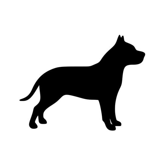 American Pit Bull Terrier Dog Staffordshire Pitbull Vinyl