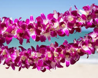 Hawaiian Lei Type  Premium Fragrance Oil  Available In Several Sizes