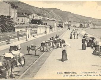 Donkey Promenade at Menton, France Photo Postcard, c. 1910