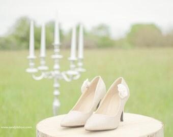 Shoe clips, shoe Clips
