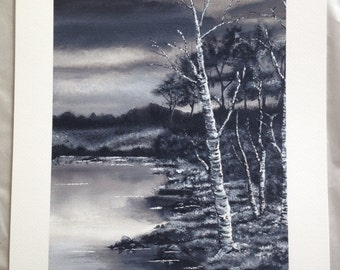 Silver Birch Tree Black and White Giclee Print
