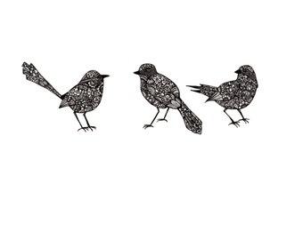 Three Little Birds Black Birds Crows Sparrows 8x10 print