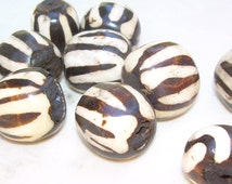Kenyan Bone beads, 23x20mm, large barrel shape
