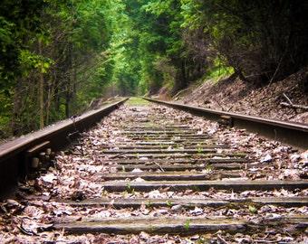 Fine Art Photography, Fine Art Print, Train Photography, Train Wall Print, Nature Photography, Nature Print, Home Decor, Tracks.
