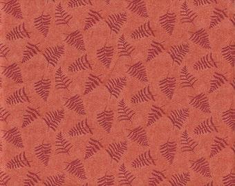Quilt Fabric - Burgundy Ferns Print on Salmon Fabric - High Quality 100% Cotton - OOP - 3/4 Yard+