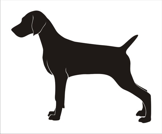 The gallery for carving patterns drawing for Weimaraner coloring pages