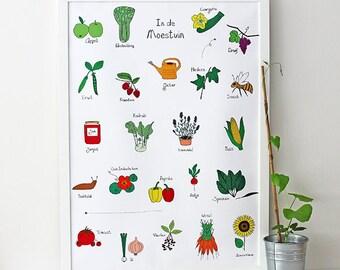 Kitchen garden poster | Dutch | Drawing | Illustration | Vegetables | Fruit | Kitchen art | Alphabet