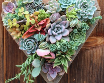 SUMMER SALE! Medium Hanging Heart Succulent Vertical Garden