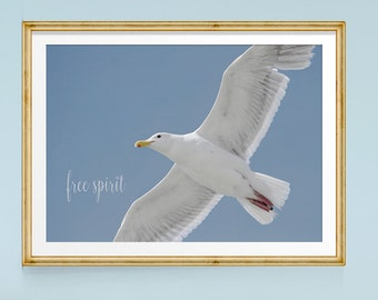 Inspirational Art, Bird Print, Seagull, Inspirational Quote, Large Wall Art, Bird Art Print, Flying Birds, Blue and White Art, Nature Photos