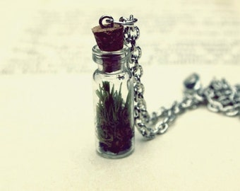 live moss terrarium necklace - choose your chain length and color // living jewelry // live terrarium necklace // customizable