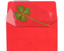 Genuine Real 4 Four-Leaf Clover Bookmarks Irish Shamrock Good Luck Charm for Smartphone Wallet Case Amulet Purse Coating Gift Thanks Card M