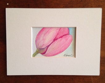 Original Watercolor Painting, ACEO, Tulip,  Pink Tulip for her,  gift, wall art. Hostess gift, 2 1/2 by 3 1/2 inches. Matted