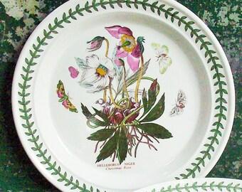 Vintage Portmeirion Botanic Garden China / Large Plate / Great Botanical Illustrations / Christmas Rose