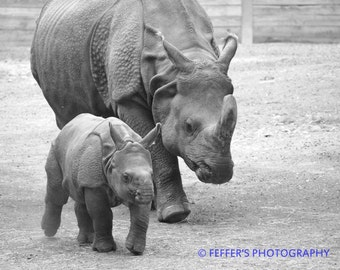 Mommy Rhino and Baby  Digital photography Animal decor fine art print