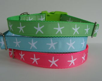 Starfish Dog Collar - Ready to Ship!
