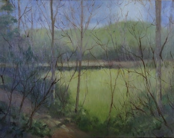 """Oil Painting on Stretched Canvas """"Meadow"""" by artist Walt Carter"""
