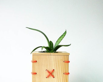 CINCH Small Spruce Wood Planter Box with Orange Paracord
