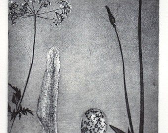 Nature Table, original etching
