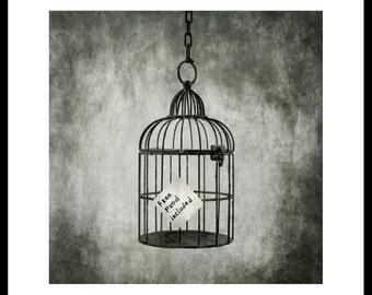 Cage.Silver gelatin darkroom print