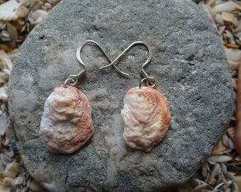 Corrugate Jewelbox SeaShell Earrings