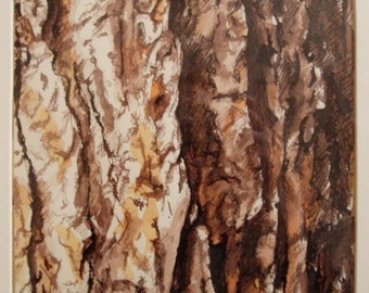 Bark Composition