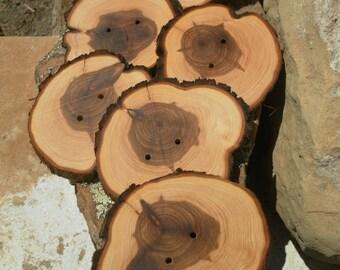 6 extra large Juniper Wooden buttons- handmade buttons~  big buttons 2.75 inch (4014)