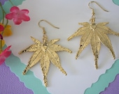 Gold Leaf Earrings, Real Maple Leaf, Real Leaf Earrings, Real Gold Japanese Maple Leaf, Gold, Nature, LEP19