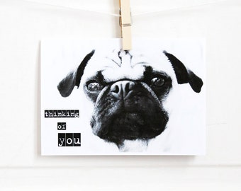 Thinking of You Pug Greeting Cards - Set of 4 - Pug Card - All Occasion Cards