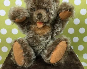 "Steiff Bear- Zotty 8"""